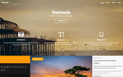 Osmosis Template Website