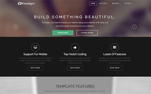 Paradigm Template Website