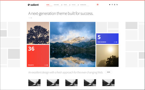Salient Template Website